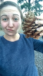 Face sized pine cones!